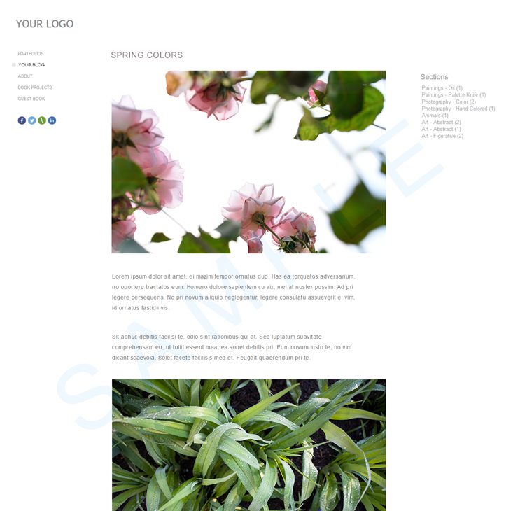 The Blog Entry Details Page