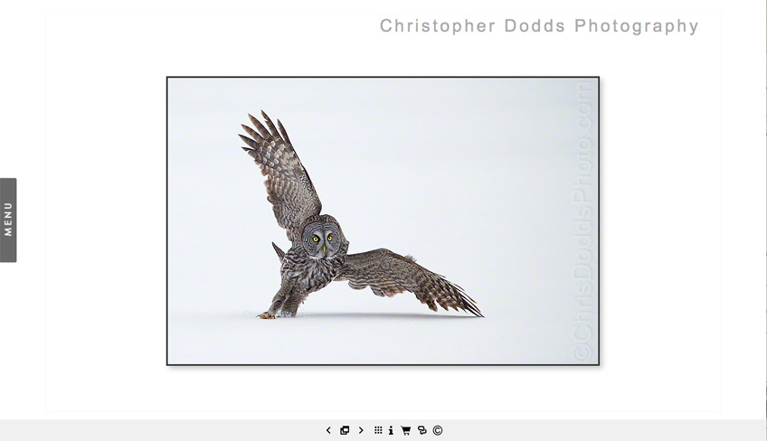 Chris Dodds Website